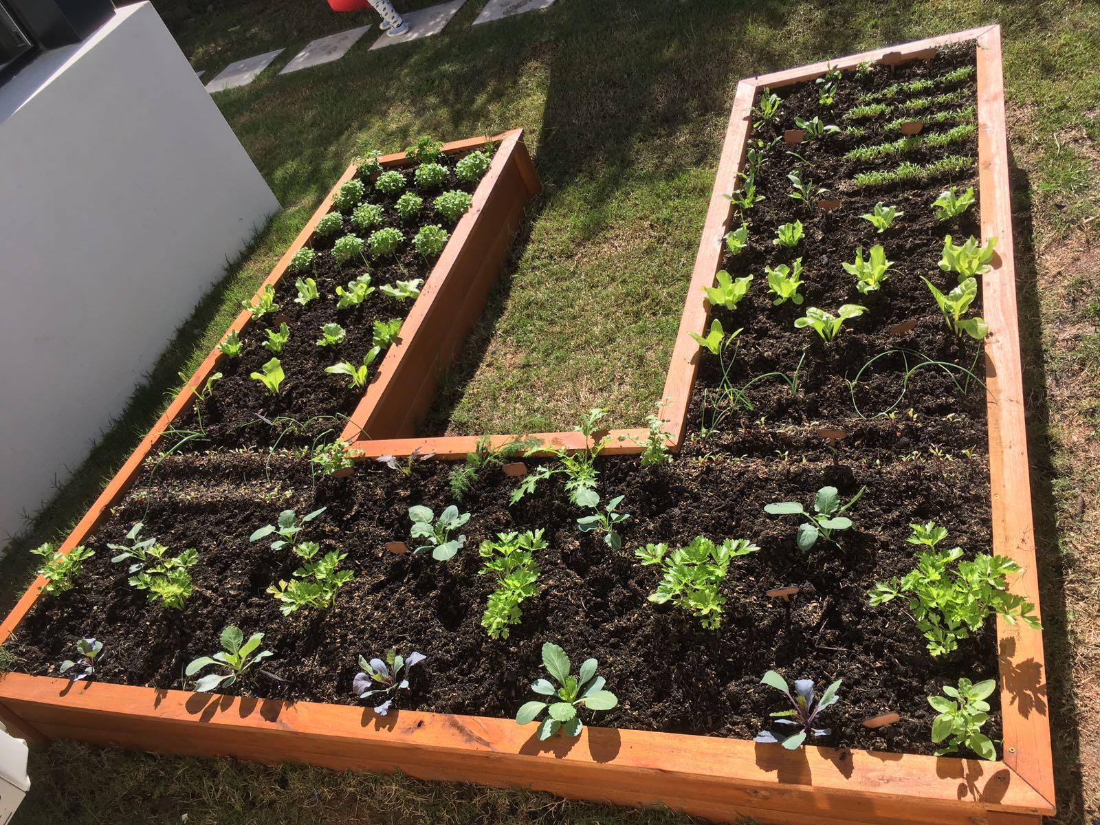 Huerta en casa dise amos armamos y mantenemos tu huerta for Para desarrollar un jardin contemporaneo